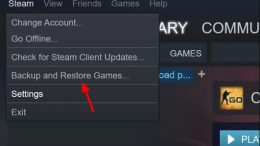 fixes for steam not recognizing installed game