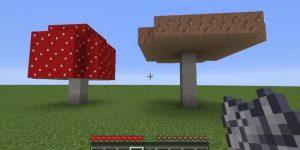how to grow huge mushrooms in minecraft