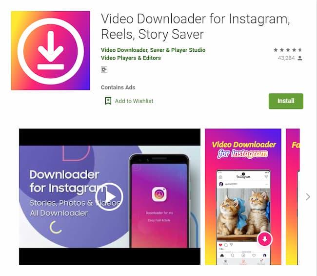 download instagram reels video